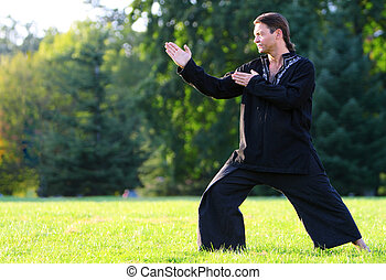 Zen master - Man posing side view in a kung fu position...