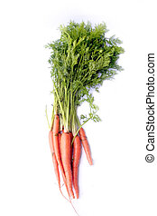 Organic Carrots - Bunch of organic carrots isolated on white