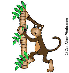Monkey -  Monkey with a confused expression climbing a tree.