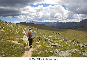 Hiker in the Mountains - Hiker among yellow and sunny green...