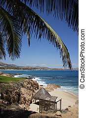 beach in Los Cabos, Baja California Sur, Mexico