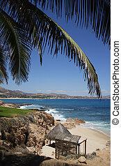 beach in Los Cabos, Baja California Sur, Mexico