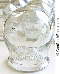 spider in the medical cupping glass