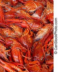 rojo, cangrejos de río