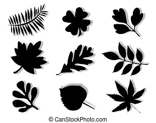 Leaves silhouette - Different leaves of different trees in...