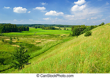 Rural landscape. - Saturated summer landscape - view of the...