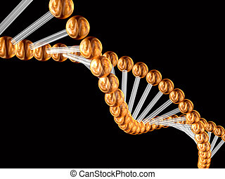 3d genetic code - 3d model of a genetic code incorporated by...