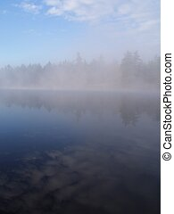 misty lake - misty morning on lake