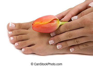 Pedicure and Manicure - Pedicured foot and manicured hand...