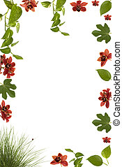 Frame - Beautiful floral frame with orchids, lady bug, fig...