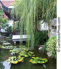 serene beauty - chinise gardens in Portland, oregon