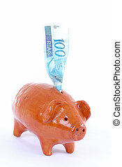 Pig Bank with a brazilian currency 100 Reais.