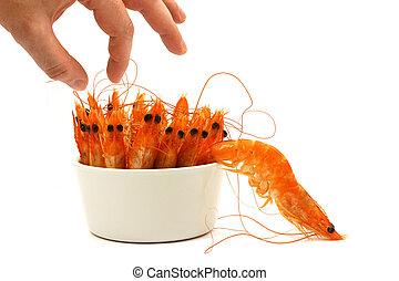 shrimp escape