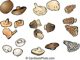 Mushrooms illustration - Hand-drawn illustration clipart of...