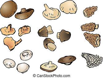 Mushrooms illustration - Hand-drawn illustration clipart of...