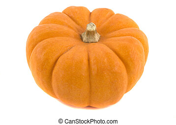 Pumpkin - Orange pumpkin