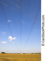 Powerlines - Powerline among farm landscapes with sunny...