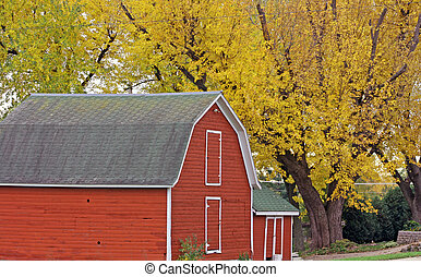country barn - country hobby barn under fall colored trees