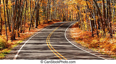 Scenic Autumn Drive - scenic drive through woods autumn time...