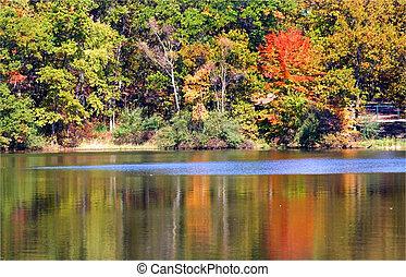 Beautiful Autumn Scene - Beautiful autumn trees near...