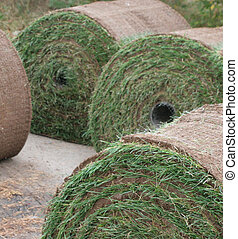 Round Sod Bails - Sod in large round bails