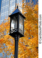 Street Lamp - Decorative Street Lamp With Fall Autumn Colors...