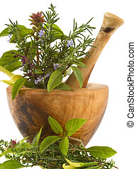 Herbs - Healing herbs and edible flowers (handcarved olive...