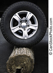 tire and log - focus point on center of photo