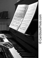 notes and counterpoints - black and white portrait of hands...