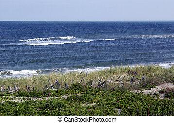 On the sea coast