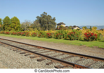 Wine Country railroad - Railroad tracks in Wine Country, St...