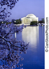 Jefferson Memorial Cherry - Jefferson Memorial in the...