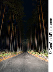 Weird road. - Road in the forest by night.