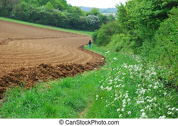 Ploughed field in spring - with spring flowers