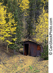 Mine Shack in Autumn Woods - Abandoned mine shack in the...