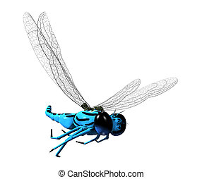 3D Dragonfly - 3D blue dragonfly with transparent wings and...