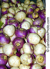 Turnips - Loads of turnips after an healthy harvest and...