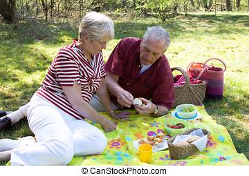 Senior picnic - Senior couple enjoying the outdoors while...