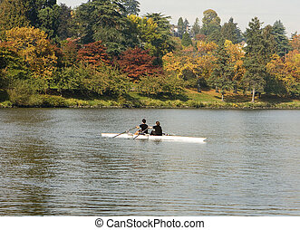 Pair Rowing In Autumn - A racing shell with two people...