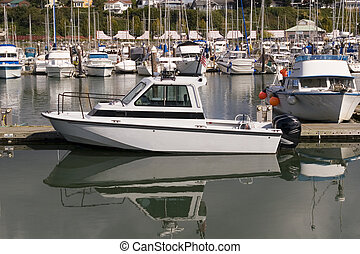 White Motor Launch - A white motor boat at a busy marina