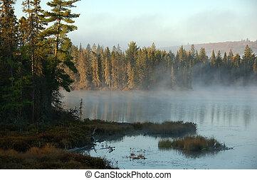 An autumn\\\'s landscape - A beautiful autumn\\\'s landscape...