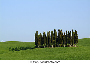 tuscany landscape - beautiful tuscany landscape with ill,...