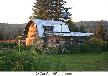 Cabin in the Wilderness - The morning sun shines on an...