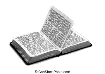 bok of job - bible open to the book of job chapters 13...
