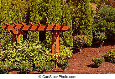 Cedar Arbor in a garden