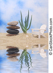Aloe Plant and Chair - Aloe Plant With Stones and Chair on...