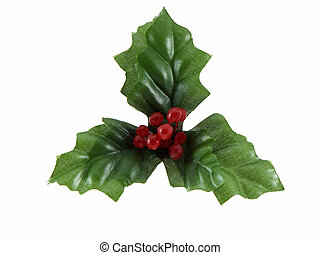 Christmas Holly - Christmas holly isolated on a white...