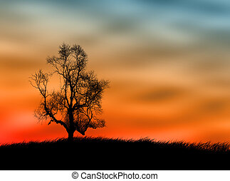 Tree landscape - One tree on the field against a sunset sky