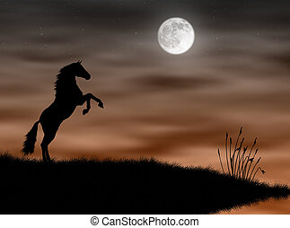 Horse in the moonlight - Wild horse silhouette in the...