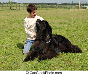 child and giant dog - little girl and giant dog